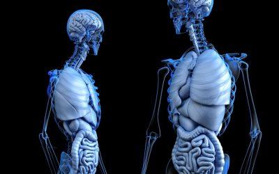 Ways To Treat Pulmonary Embolism