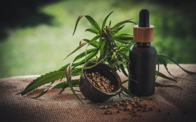 CBD Products and Your Overall Health